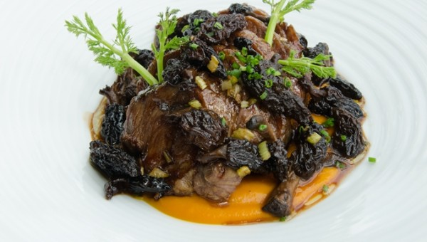 Catalunya Lamb Shoulder with Pumpkin Puree and Morels