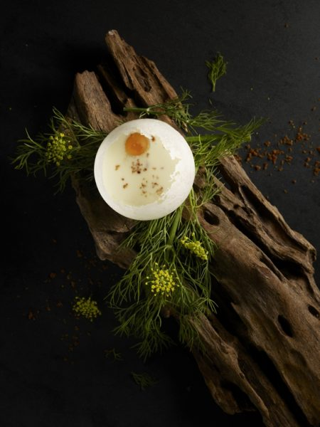 Bacon & Egg_Sheep Milk Yoghurt_Elderflower Honey_Bacon Soil2
