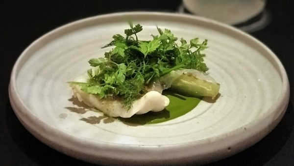 Steamed Green Bone, Roasted Lettuce