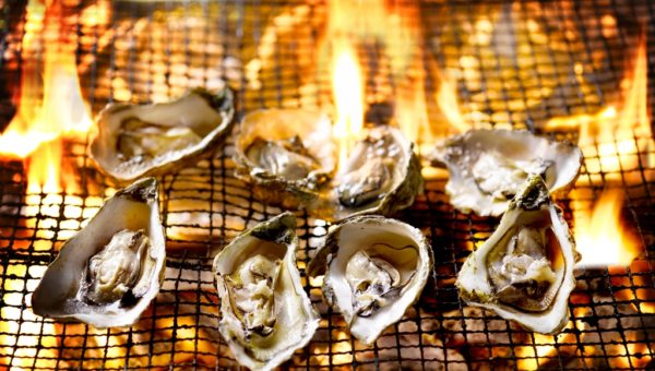 Drogons Fire Oysters