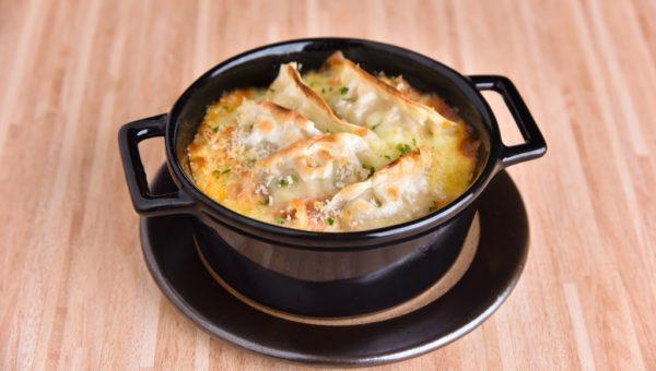 Lasagne Gyoza