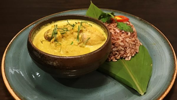 Malay-style Organic Lacto Chicken Curry
