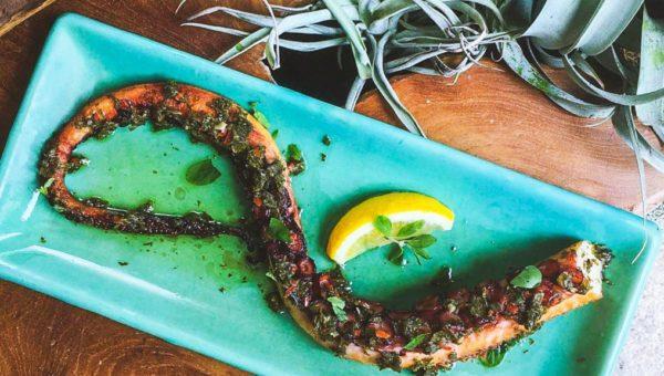 Summerlong_Charred Octopus