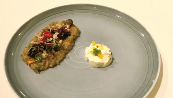 Three-way Mushroom Brown Rice Khichdi served in Risotto Style