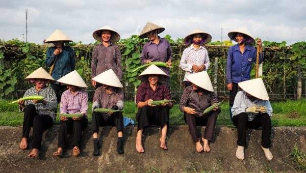 Photograph by Ha Phuong. Thao Farmers at Vinh Ha Farm with their crops. Thriive.