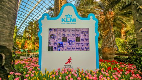Get a Chance to win KLM Royal Dutch Airlines Return Tickets