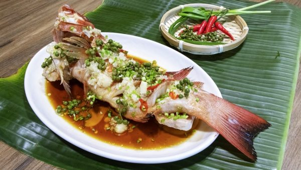 Steamed Red Grouper with Green Peppercorns