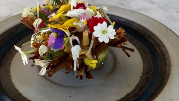 Blooming onion with blooming herbs