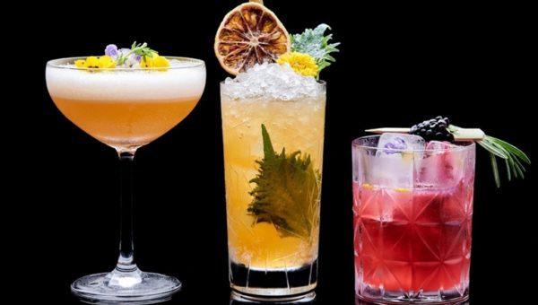 Cocktail Festival