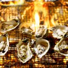 Drogon's Fire Oysters