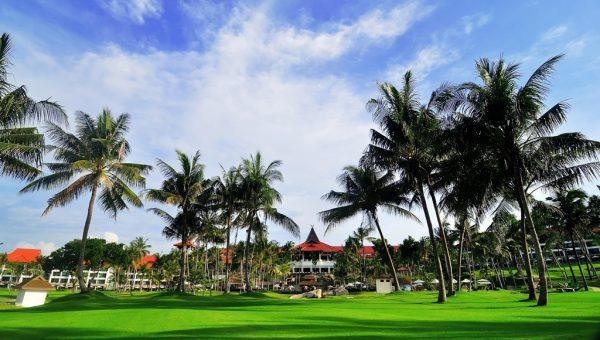 Bintan Lagoon Resort - Palm trees